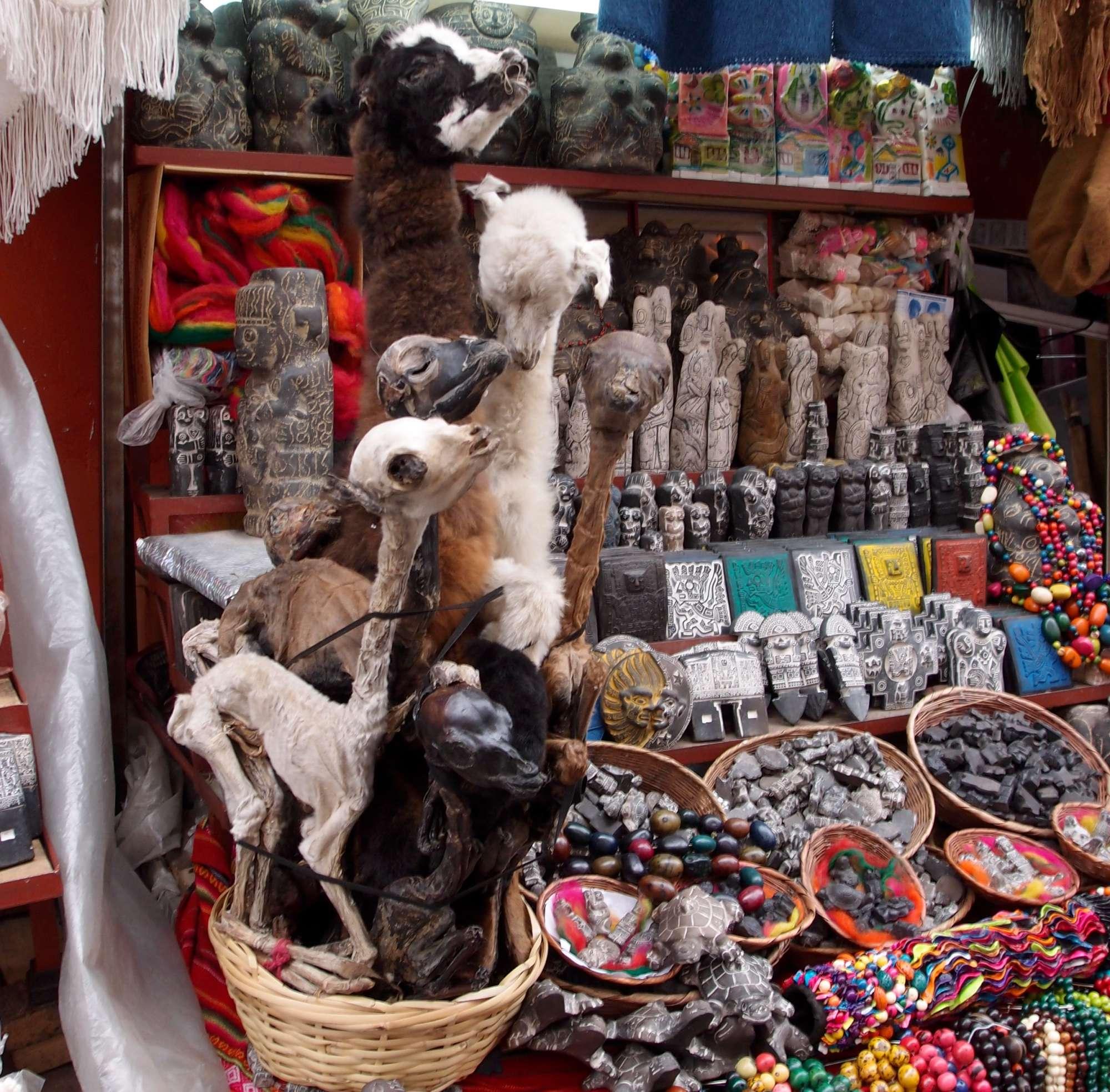 dried llamas